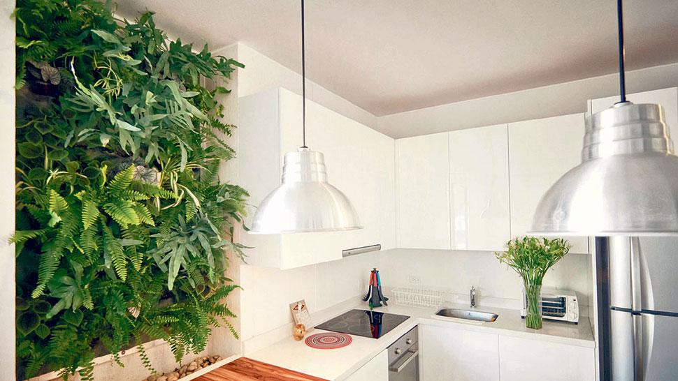 Baño Con Jardin Interior:en el interior los muros verdes se pueden emplazar tanto en interiores