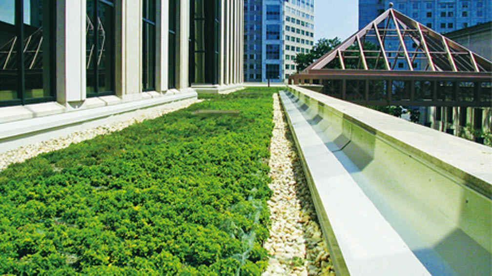 Placa aislante para techos verdes la voz del interior - Aislante para techos ...