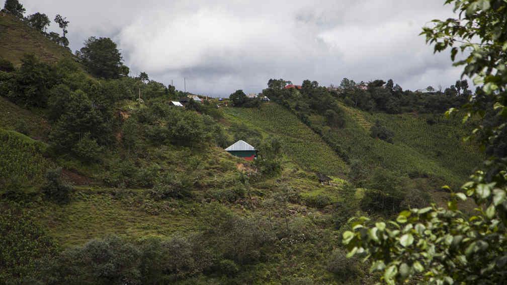 San José de Las Flores. El pueblo desde donde partió Gilberto (AP).