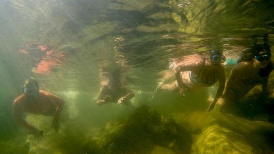 Sólo con una máscara. No hace falta mucho para descubrir el encanto bajo el agua entre arena y piedras, con unas simples antiparras alcanza. (La Voz)