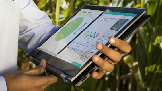 EN LA NUBE. Desde su casa, un productor puede ver cómo están los cultivos o si tiene que regar su campo. EL interés por estos servicios se incrementó en los últimos días. (Gentileza Kilimo)