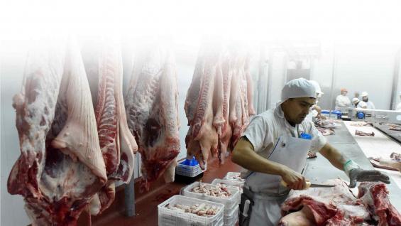 FRIGORÍFICOS. La segunda etapa de inversiones chinas en el sector porcino incluirá a la industria y en instalaciones de frío