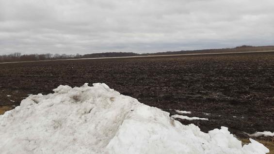 NEVADO. Un campo en el condado de Dekalb: se sembrará en abril. (LA VOZ)