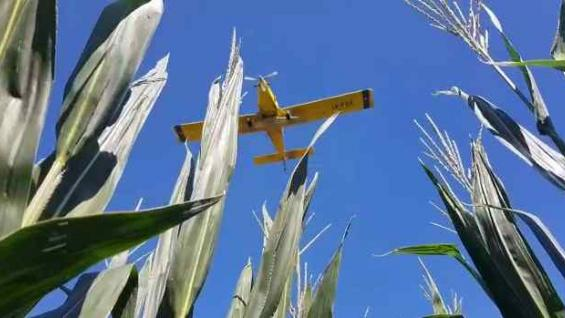 FUERZA AÉREA. El fin de semana pasado numerosos aviones avanzaron conla siembra de centeno en miles de hectáreas del norte de Córdoba. (Gentileza Mauro Libardi)