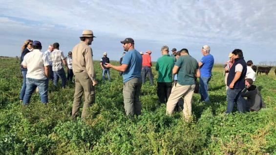 FEDERAL El grupo que apuesta a las pasturas está integrado por productores de Córdoba, Santa Fe, Buenos Aires, Entre Ríos, La Pampa, Chaco y Santiago del Estero. (Gentileza Edgardo Bustamante)