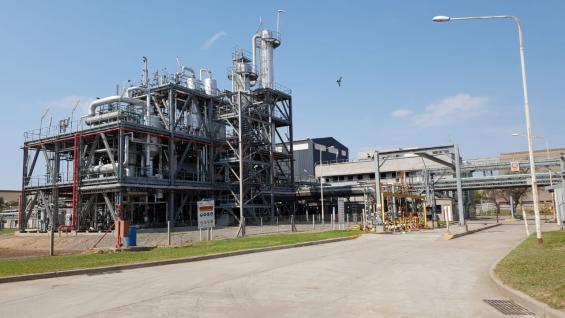 IMPACTO. Según Carbio, esta planta, actualmente completamente paralizada, procesa 700 toneladas por día o 240 mil toneladas por año, es decir el 25 por ciento del consumo nacional de biodiésel. (CARBIO)