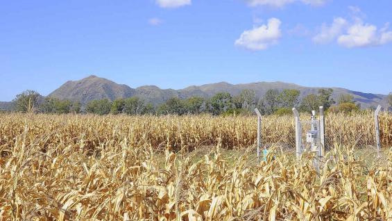 Certificado. Establecimiento con cultivos extensivos en la zona de Cosquín, integrante del programa Municipio Verde. (Aapresid)
