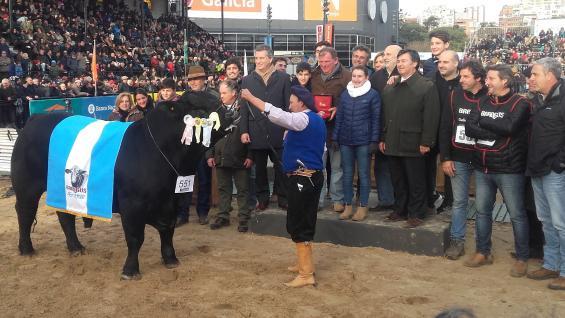 FESTEJO. Los propietarios del toro criado en Bell Ville celebran su premio como el mejor de la raza Brangus en Palermo 2018. (LA VOZ)