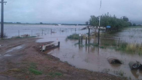 Las lluvias volvieron a afectar la producción lechera en el departamento Río Segundo (Fernando Cuadrado)