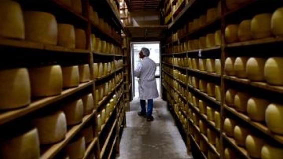 APUESTA. La exportaciones son el mecanismo que el Gobierno propicia para recomponer el precio de la leche (LA VOZ)