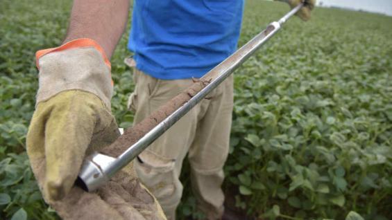 HUMEDAD. En el verano, los suelos de la zona núcleo mostraban el déficit hídrico. (LA VOZ)