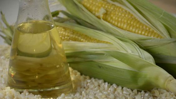 BIOCOMBUSTIBLE. El bioetanol de maíz es sustentable, según el estudio del Inta, el Inta y Cagbio. (Inta Informa)