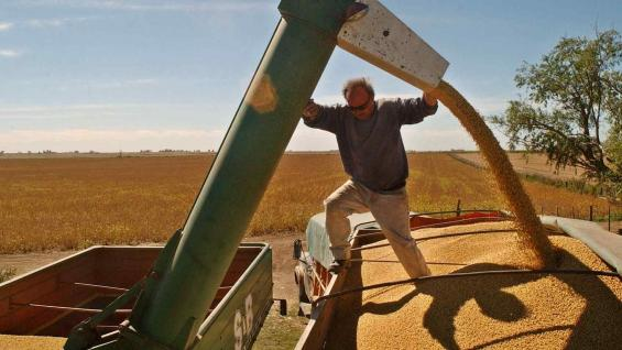 DESCARGA. La comercialización de granos se está haciendo más lenta, pero a niveles normales.