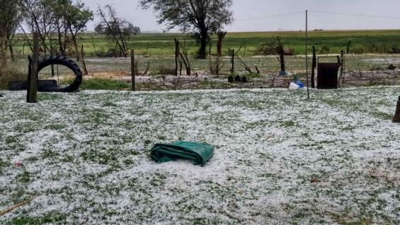 BLANCO. Como si fuera nieve: así quedó un campo en el centro de Córdoba, tapado por el granizo.