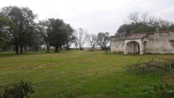 El campo ubicado en Ordoñez saldrá a subasta el 9 de noviembre y el 7 de diciembre, en Bell Ville