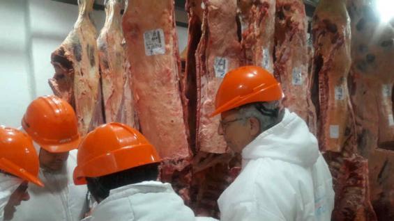 Técnicos trabajando en las plantas de faena de Córdoba, con el nuevo sistema de tipificación. (Subsecretaría de Ganadería de la Nación)