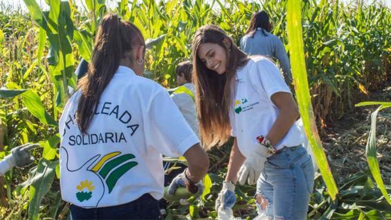 CHOCLEADA SOLIDARIA. Imágenes de la edición 2017 (Facultad de Ciencias Agropecuarias)