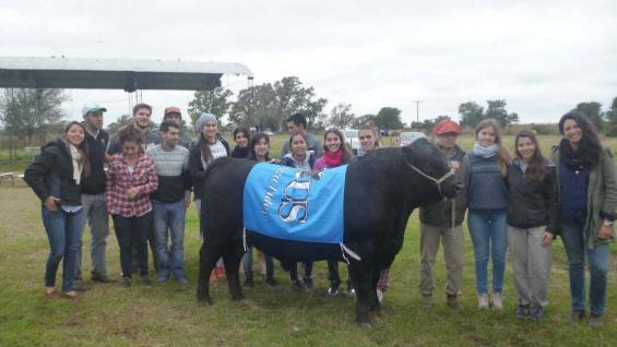 Alumnos de Ciencias Agropecuarias participan en la cría de reproductores controlados en la cabaña de la UNC. (La Voz)
