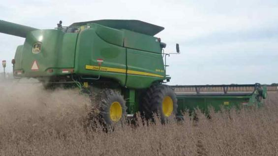 AVANCE. La cosecha de soja en la provincia tiene en la actual campaña un ritmo mayor a la del año pasado.