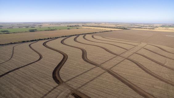 COMBINACIÓN. Siembra simultánea de trigo junto a una de las terrazas en construcción para el manejo del agua en el campo.
