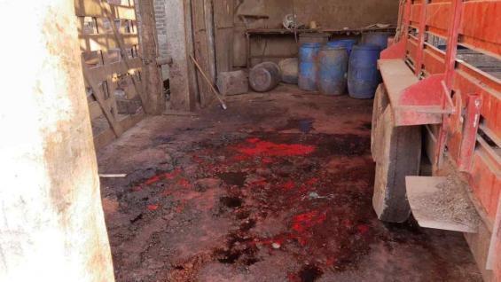 RIESGO. La faena se desarrollaba en pésimas condiciones de salubridad. (Ministerio de Agricultura de Córdoba)