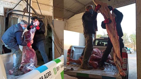 CARNE. Algunos animales se destinaban a un frigorífico caroyense que fue clausurado. (Ministerio de Agricultura de Córdoba)