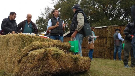 PAUTAS. Técnicos del Inta Manfredi explicaron algunas claves que hay que tener en cuenta para hacer rollos y fardos de alfalfa de buena calidad. (LA VOZ)
