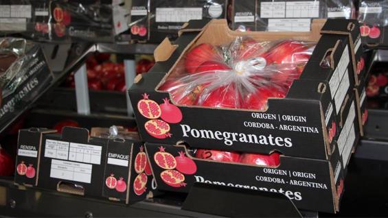 GRANADAS. Frutos cordobeses de exportación (Granadas Argentinas SA)