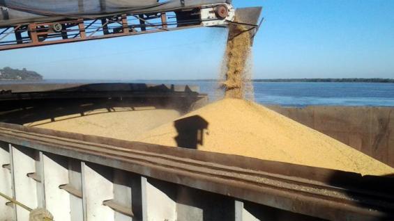 EMBARQUES. Por un mayor flujo de ventas, la soja argentina aportaría 5.000 millones de dólares más el año próximo. (LA VOZ)