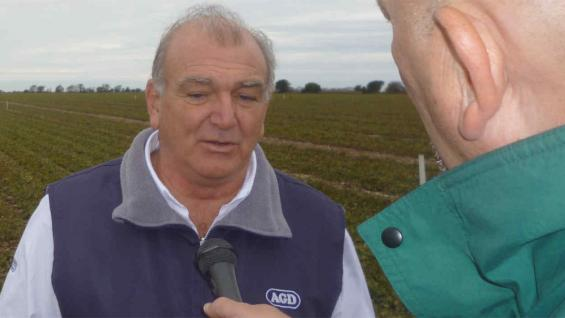 """GUSTAVO RINAUDO. """"Vinimos a la región para hacer mil hectáreas de maní y ya tenemos cinco mil. La mayoría, asociadas con productores"""""""