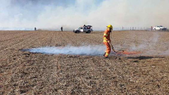 FUEGO. En campos con rastrojos quemados se reduce la productividad. (Gentileza Gabriel de Rademaeker)
