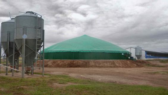 GENERADOR. En La Quimera, un biodigestor de 22 metros de diámetro y cinco de profundidad, produce entre 120 y 180 kilovatios hora de energía (LA VOZ)