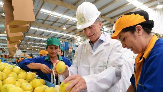 ANUNCIO. En Tucumán, el presidente Macri anunció el regreso de los limones argentinos a Estados Unidos, luego de casi 20 años. (PRESIDENCIA)