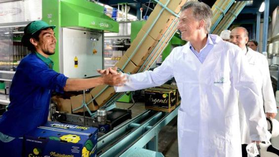 VOLUMEN. En 2018, Argentina podría envíar hasta 20 mil toneladas de limones al mercado estadounidense. (PRESIDENCIA)