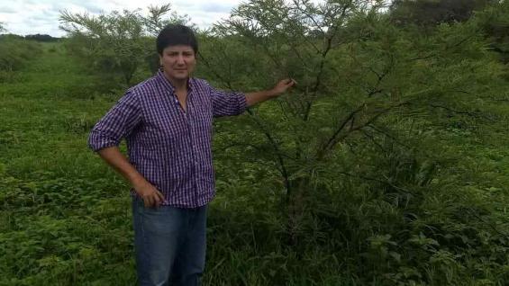 A MEDIDA. Luis Argüello Pitt sostiene que cada explotación tiene una solución forestal que se adapte a sus necesidades. (Optimizar)