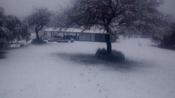 NIEVE. Un establecimiento agropecuario de Guayascate, en el norte de Córdoba, totalmente blanco por la nieve. (Gentileza Luis Magliano)