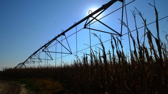 PIVOT. En Monte Cristo, los Arnaldo tienen riego para 400 hectáreas. (Nicolás Bravo / LA VOZ)