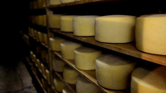 QUESOS. Es el tercer producto más exportado, por detrás de la leche en polvo y los sueros. (Secretaría de Agroindustria)