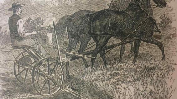 ILUSTRACIÓN. No hay imágenes de esa época, pero sí ilustraciones: en este caso, de una cortadora de alfalfa a caballo. (Libro Argentina 200 años. Postales de la independecia 1816-2016)