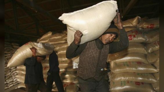 SOJA. Trabajadores cargando sacos de soja en Shenyang, en China. (Reuters/Archivo)