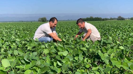 PRODUCTORES. César Suppo y Ernesto Carreño, evaluando el estado de la soja en la zona de Despeñaderos. (Gentileza UPL)