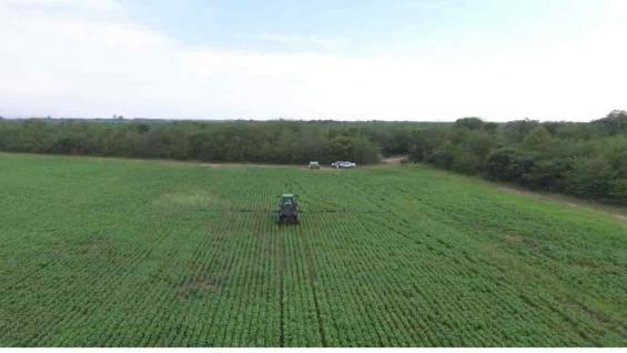Las labores de aplicación en el lote de soja en Dique Chico quedaron documentadas a través de un dron.