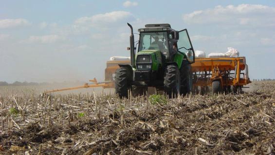 EXPECTATIVAS. La siembra de trigo revirtió sus expectativas iniciales en la zona núcleo, luego de las lluvias de otoño.