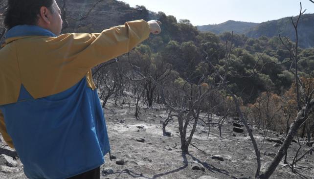 Cenizas. Un gran incendio afectó a las Sierras Chicas en 2011. Este año, hasta ahora, casi no hubo focos allí (Facundo Luque/Archivo).