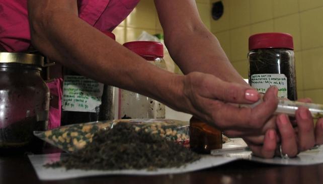 Defensora. Brenda Chignoli defiende el uso medicinal del cannabis (La Voz / Pedro Castillo).