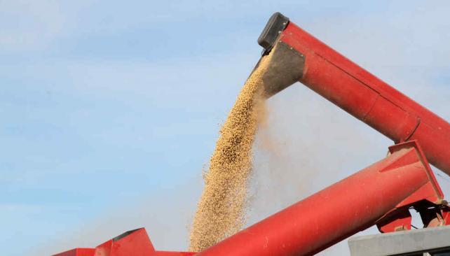 El precio de la soja, en su valor más alto en lo que va del año