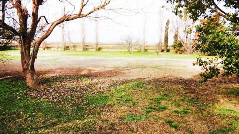 En Córdoba, el jardín debe ser de color marrón durante el invierno. (Aguas Cordobesas)