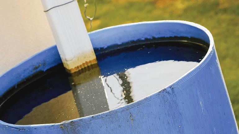 Limpiar y/o eliminar todos los objetos que contengan o puedan acumular agua. (Sanatorio Allende)