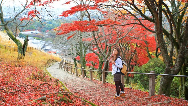 JAPÓN. Es este país todo es diferente, todo es asombroso (Interturis).