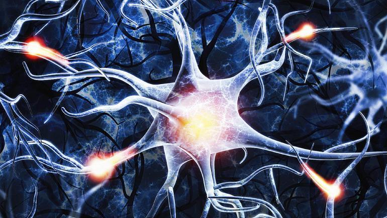 Los estudios de imágenes por resonancia magnética demuestran lo funcional del cerebro, esta práctica activa diversas áreas del cerebro como la ínsula. (Sanatorio Allende)
